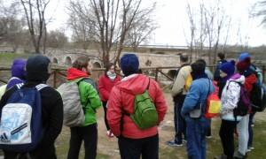 Puente romano al inicio de la ruda senderista